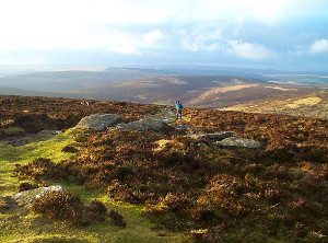 hortly to have broadband access? Hameldown Tor in Dartmoor, Devon, by Fiona Avis/Geograph.org.uk