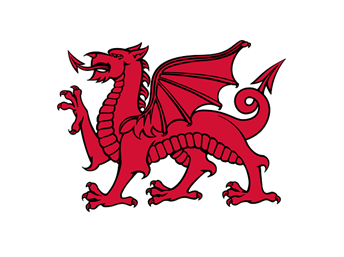 Welsh dragon banner
