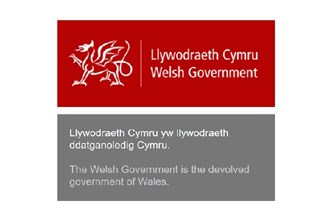 GOV.WALES screenshot.jpg