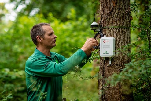 Matthew Wilkinson examines IoT sensor on tree